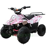 ATV-B01 110cc ATV with Automatic Transmission, Remote Control and Rear Rack!