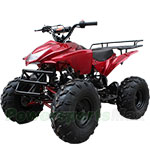 "ATV-B05 125cc ATV with Automatic Transmission w/Reverse, Foot Brake, Remote Control! Big 19""/18""Tires!"