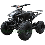 "2018 New Arrival! ATV-B05 125cc ATV with Automatic Transmission w/Reverse, Foot Brake, Remote Control! Big 19""/18""Tires!"