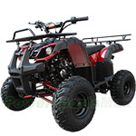 "ATV-B06 125cc ATV with Automatic Transmission w/Reverse, Foot Brake, Remote Control! Big 16"" Tires!"