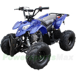 "ATV-F014 110cc ATV with Automatic Transmission, Foot Brake! Big 16"" Tires!"