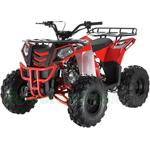 "ATV-G007 Commander 125cc ATV with Automatic Transmission w/Reverse, Electric Start, Big 19""/18"" Tires!"