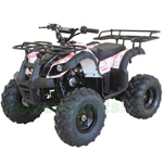 "ATV-G012 Rider 9 125cc ATV with Automatic Transmission w/Reverse, Electric Start, Big 19""/18"" Tires!"
