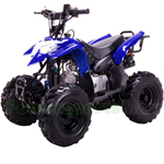 "Coolster ATV-3050B 110cc ATV with Automatic Transmission and Remote Control! Big 16"" Tires!"