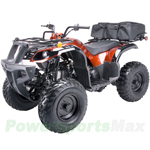 "ATV-J010 150cc Utility ATV with Automatic Transmission w/Reverse, Foot Brake, Free Cargo Bag! Big 23""/22"" Tires!"