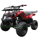 "Coolster ATV-3125R 125cc ATV with Automatic Transmission w/Reverse, Foot Brake and Remote Control! Big 16"" Tires!"