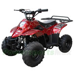 ATV-J013 110cc ATV with Automatic Transmission, Foot Brake, Remote Control and Rear Rack!