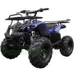 "Coolster ATV-3125XR-8 125cc Utility ATV with Automatic Transmission w/Reverse, Foot Brake, Remote Control! Big 19"" Tires!"