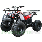 "ATV-J016 125cc Utility ATV with Semi-Automatic Transmission w/Reverse, Foot Brake, Remote Control! Big 19"" Tires!"