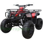 "ATV-J020 125cc Full Size ATV with Semi-Automatic Transmission,Electric Start! Big 21""/20"" Tires!"