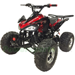 "Coolster ATV-3125CX-3 125cc Sports ATV with Automatic Transmission w/Reverse, Remote Control! Big 19""/18"" Chrome Wheels!"
