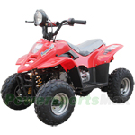 ATV-P58 110cc ATV with Automatic Transmission, Foot Brake, Remote Control! New Arrival!