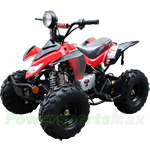 "ATV-P60 110cc ATV with Automatic Transmission, Foot Brake, Remote Control! Big 16"" Tires!Free Gifts!"