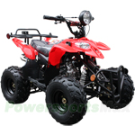"ATV-P62 110cc ATV with Automatic Transmission, Foot Brake, Remote Control! Big 16"" Tires!"