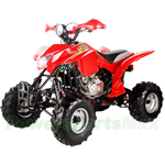 ATV-T006 250cc Sports ATV with Manual Transmission w/Reverse and Water Cooled Engine!