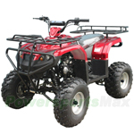 "ATV-T012 125cc Utility ATV with Semi-Automatic Transmission w/Reverse and Foot Brake! Big 21""/20"" Wheels!"