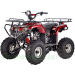 ATV-T012 125cc Utility ATV with Semi-Automatic Transmission w/Reverse and Foot Brake!