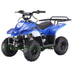 TaoTao ATA-110B1 110cc ATV with Automatic Transmission,Remote Control!Rear Rack!