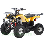 ATV-T020 200cc Utility ATV with 4-Speed Manual Transmission w/Reverse and Foot Brake!
