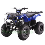 ATV-T020 TAOTAO 250D Utility ATV with 4-Speed Manual Transmission w/Reverse and Foot Brake!