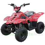 ATV-T036 110cc ATV with Automatic Transmission, Foot Brake, Remote Control!Free Shipping!