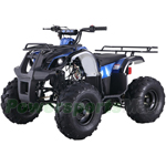 "ATV-T038 125cc ATV with Automatic Transmission w/Reverse, Foot Brake and Remote Control! Big 19""/18"" Tires!"