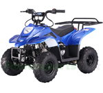 TaoTao Ready B1 110cc ATV with Automatic Transmission, Remote Control! Rear Rack! Fully Assembled!