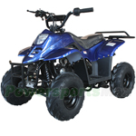 ATV-V001 110cc ATV with Automatic Transmission, with Foot Brake, Remote Control and Rear Rack!