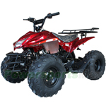 "ATV-V002 125cc Utility ATV with Automatic Transmission w/Reverse, Remote Control! Big 19""/18""Tires!"