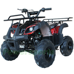 "ATV-V005 125cc ATV with Automatic Transmission w/Reverse, Foot Brake, Remote Control! Big 16""Tires! Big LED Lights!"