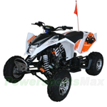 "EGL 250cc ATV with 4-speed Manual Transmission with Reverse, Chain Driven, Electric Start, Big 20""/19"" Tires!"
