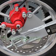 Rear Disc Brake