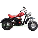 "RPS Falcon 200cc Dirt Bike with Automatic Transmission and Recoil Start! 19"" Wide Fat Balanced Tires!"