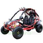 "GK-C03 200GKA Go Kart with CVT Transmission w/Reverse, Disc Brakes! Electric Start! Big 21""/22"" Wheels! With Free Sparetire!"
