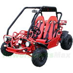 GK-F002 150cc Go Kart with Automatic Transmission w/Reverse, Electric Start!