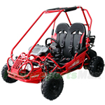 GK-M05 163cc Kid Size Go Kart with Automatic Transmission, 5.5 HP General Purpose Engine, Remote Control!