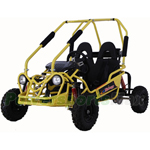 GK-P010 110cc Go Kart with Automatic Transmission w/Remote Control!Luxury Seat!