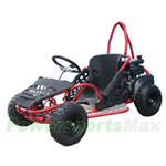 "Taotao GK80 80cc Go Kart with Automatic Transmission, Hydraulic Disc, Chain Drive! Recoil start! 13"" Wheels! An Adjustable Seat!"