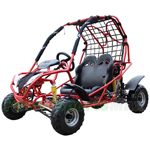GK-X01 125cc Go Kart with Automatic Transmission w/Reverse, Front & Rear Disc Brakes! Remote Control!
