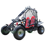 GK-X05 200cc Go Kart with CVT Transmission w/Reverse, Front & Rear Disc Brakes!