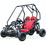GK-X10 110cc Go Kart with Automatic Transmission w/Reverse, Disc Brake! Electric Start! Remote Control!