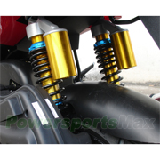 Rear Dual Shocks