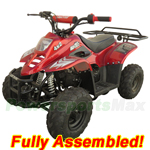 ATV-J013-R511 3050C 110cc ATV with Automatic Transmission, Remote Control and Rear Rack! Refurbished, Fully Assembled!