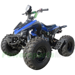 "ATV-P65-R295 125cc ATV with Semi-Automatic Transmission w/Reverse,Remote Control, 19"" Tires!Refurbished, Fully Assembled!"