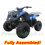 "ATV-T013-R386 125cc ATV with Automatic Transmission w/Reverse, Foot Brake! Big 16"" Tires! Refurbished, Fully Assembled!"