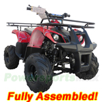 "ATV-T013-R432 125cc ATV with Automatic Transmission w/Reverse, Remote Control! Big 16""Tires! Refurbished, Fully Assembled!"