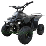 ATV-V01-R284 110cc ATV with Automatic Transmission,  Remote Control, Rear Rack!Refurbished, Fully Assembled and Tested!