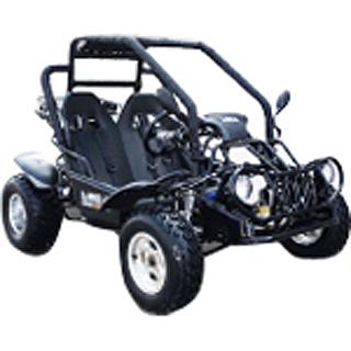 BMS Go Kart 150cc