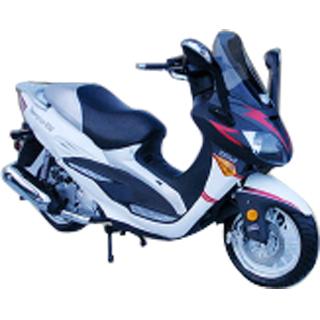 BMS Teamguys 250cc