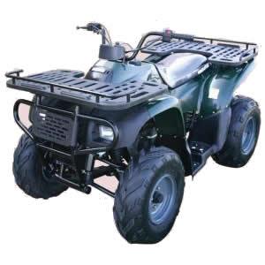 Kazuma Gator 250